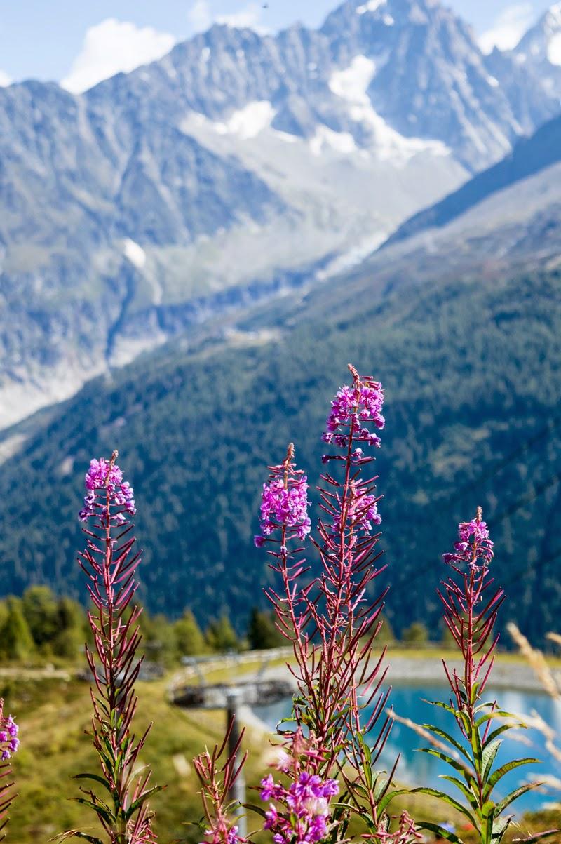 chamonix-france-travel-photo-diary-blog-blogger-la-flegere-bloomzy-3