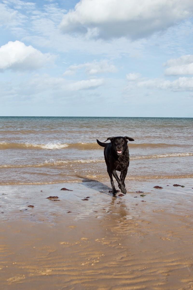 travel-diary-photo-photography-blog-blogger-norfolk-west-runton-beach-norwich-bloomzy-3