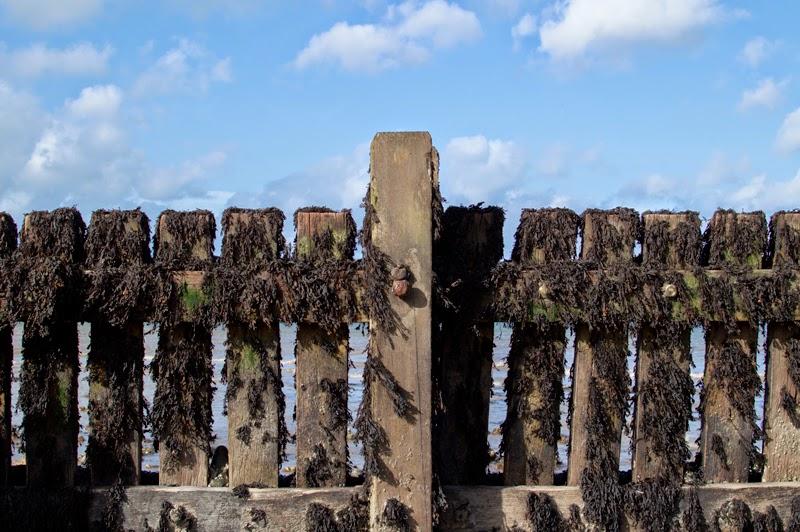 travel-diary-photo-photography-blog-blogger-norfolk-west-runton-beach-norwich-bloomzy-5