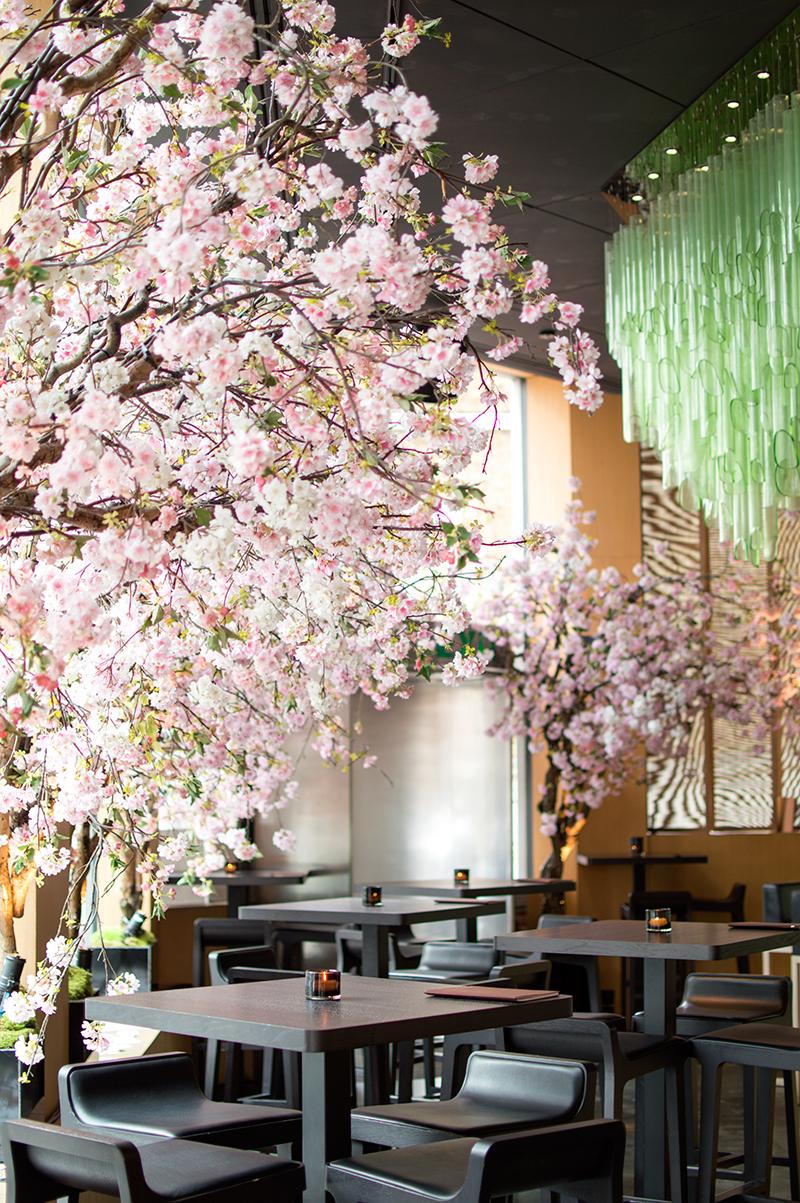 sake-no-hana-restaurant-review-sakura-where-to-eat-in-london-6