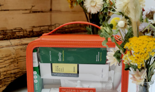 Tonic 15 x Suitcase The Carry On K-Beauty Kit